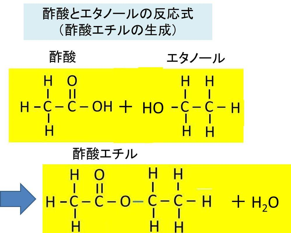 酢酸 ビニル 構造 式