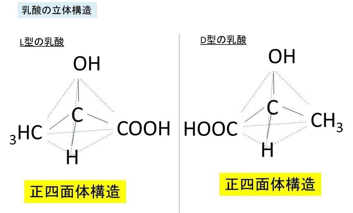 乳酸(C3H6O3)の分子式・構造式...